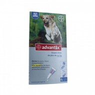 ADVANTIX GRAND CHIEN 4 PIPETTES